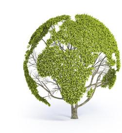 Soluciones Energías Renovables